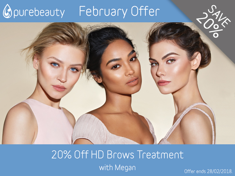 February 2018 HD Brows Offer