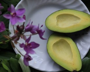 Have Your Avocado and Eat It