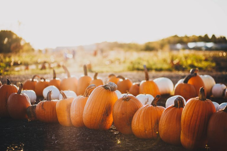 Treat Your Skin to Some Pumpkin